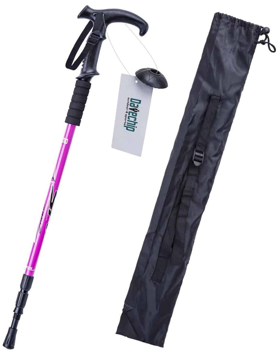 Datechip Nordic Trekking Pole Aluminum T Handle