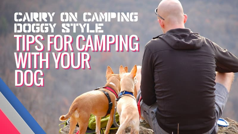 Carry-on-Camping-Doggy-Style-Tips-for-Camping-with-your-Dog