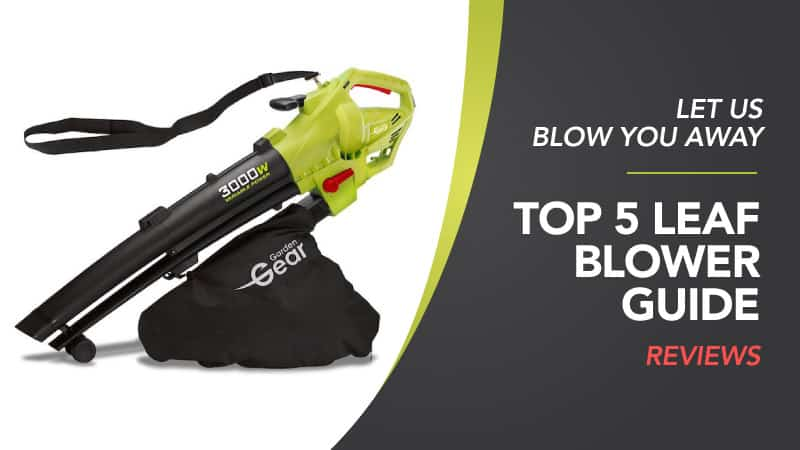 best leaf blower review