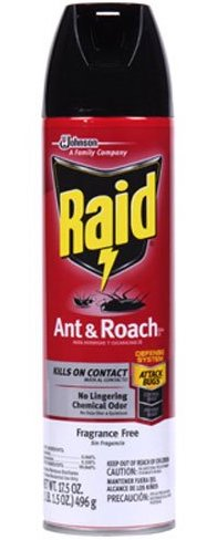 Best Ant Killer UK – Raid Ant and Roach Killer