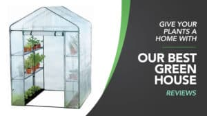 Best Greenhouse for the Garden Reviews