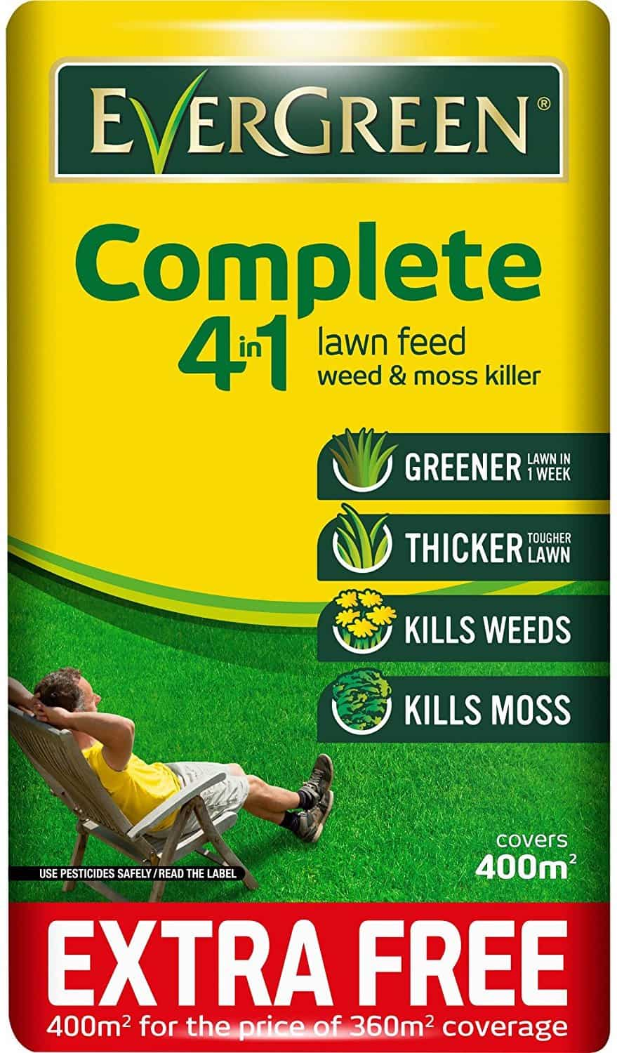 Best Lawn Feed and Weed Killer – EverGreen