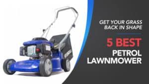 Get-your-Grass-Back-in-Shape-5-Best-Petrol-Lawnmower