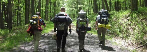 wilderness survival img
