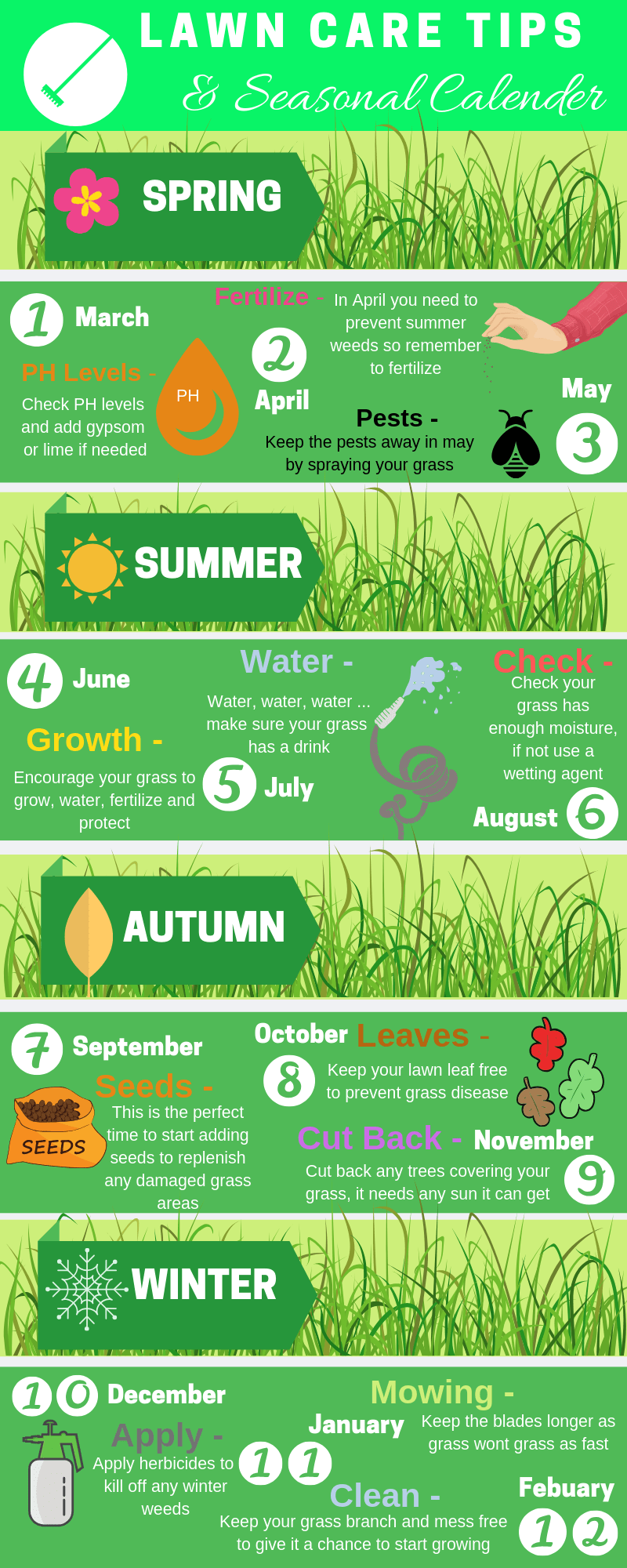 5 Best grass seeds (1)