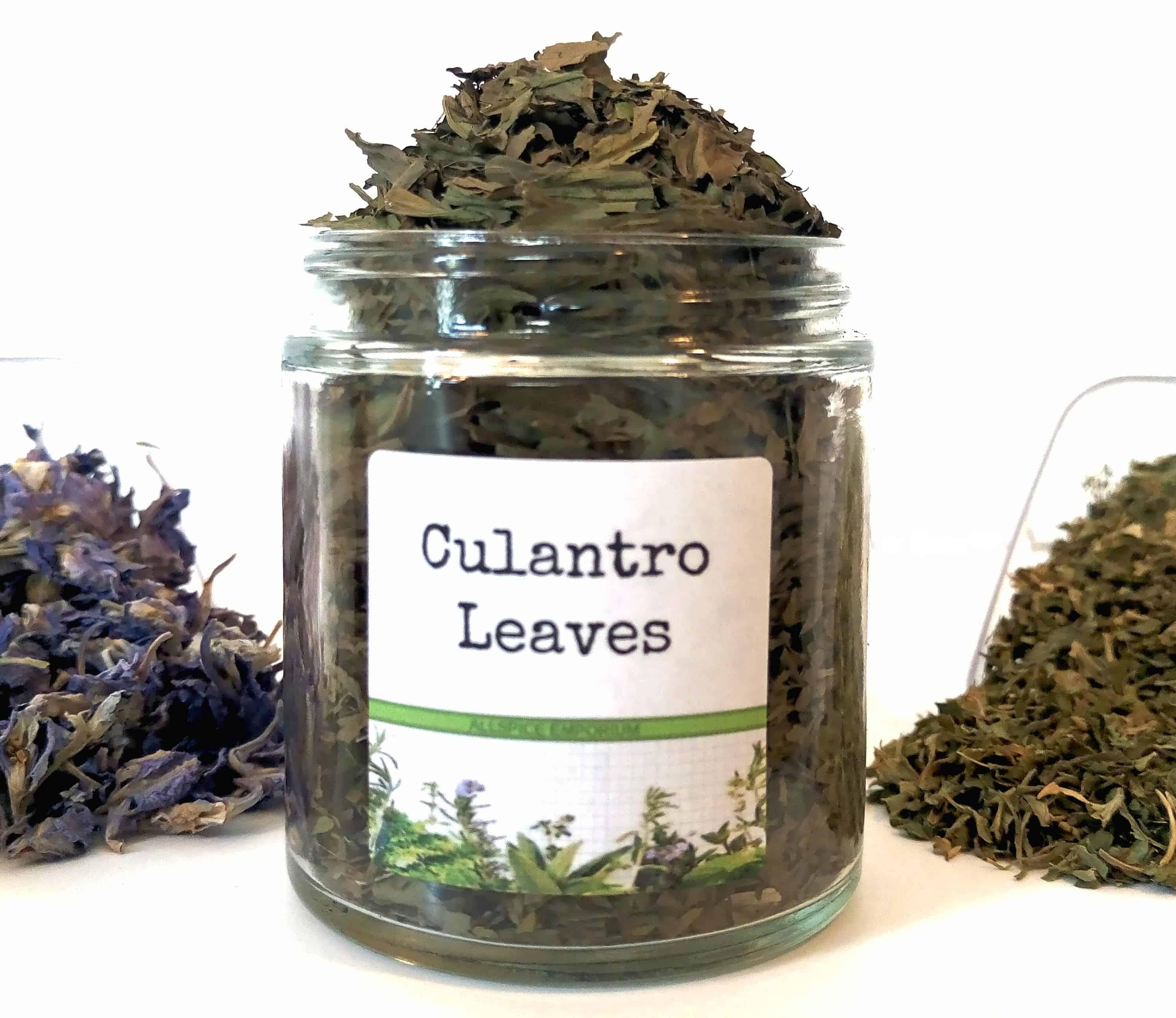 Culantro Tea